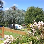 Emplacement caravane Camping du lac